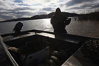 NWA Democrat-Gazette/FLIP PUTTHOFF <br /> Decoys go back in the boat Dec. 28 2018 after a duck hunt at Beaver Lake.