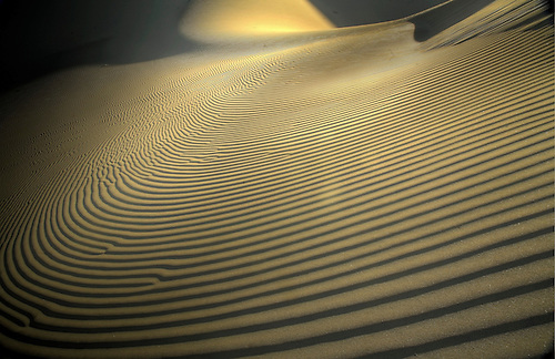 Lines of various shapes and sizes form in the sand at Eureka Dunes at Death Valley National Park