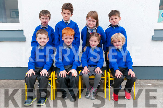 M/s Denise Wren's junior infant class at Liselton National School on their first day at school. Front: MJ Collins, Jack Kissane, Bethany Kate Purcell & Aodhran McNamara. Back : Liam O'Reilly, Luke O'Neill, Seoidin Long & Cian Fennell.