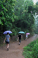 Children with umbrellas walking under heavy rain (Licence this image exclusively with Getty: http://www.gettyimages.com/detail/83154223 )