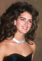 Brooke Shields 1983<br /> Photo By John BarrettPHOTOlink.net