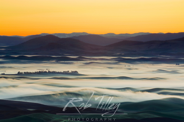 Fog Over the Palouse From Steptoe Butte SP, Whitman County, WA, USA