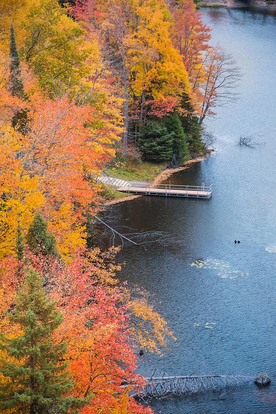 Fall color along the Dead River on County Road 510 near Marquette, Michigan.