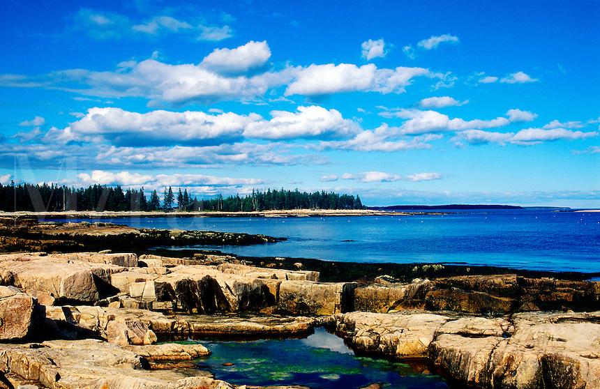 Tidal pools along rocky coastline, Mt Desert Island, Maine