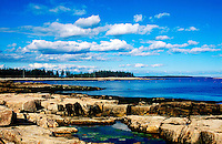 Tidal pools along rocky coastline, Mt Desert Island, Maine