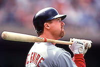 Portrait of St. Louis Cardinals Mark McGwire