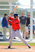 Boston Red Sox third baseman David Renfroe #19 during a minor league Spring Training game against the Minnesota Twins at JetBlue Park Training Complex on March 27, 2013 in Fort Myers, Florida.  (Mike Janes/Four Seam Images)
