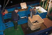 """Europe/France/Aquitaine/64/Pyrénées-Atlantiques/Pays Basque/Saint-Jean-de-Luz:  le Thonier Canneur """"Aïrosa"""" rentre   de nuit au port de la pêche au thon à la canne - déchargement des thons"""