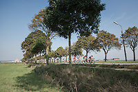12th Eneco Tour 2016 (UCI World Tour)<br /> stage 3: Blankenberge-Ardooie (182km)