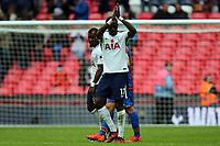 Moussa Sissoko of Tottenham Hotspur after Tottenham Hotspur vs Crystal Palace, Premier League Football at Wembley Stadium on 5th November 2017