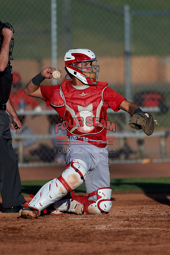 AZL Angels catcher Edwin Bisay (5) during an Arizona League game against the AZL Giants Black at the Giants Baseball Complex on June 21, 2019 in Scottsdale, Arizona. AZL Angels defeated AZL Giants Black 6-3. (Zachary Lucy/Four Seam Images)