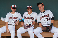 Delmarva Shorebirds Adam Hall (10), Johnny Rizer (17), and Seamus Curran (34) in the dugout before a South Atlantic League game against the Greensboro Grasshoppers on August 21, 2019 at Arthur W. Perdue Stadium in Salisbury, Maryland.  Delmarva defeated Greensboro 1-0.  (Mike Janes/Four Seam Images)