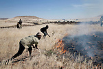 KUNENE, NAMIBIA - APRIL 24: Unidentified people try to put out a bush fire on April 24, 2008 in Kunene, Namibia. They participated in a 2-week survey with a walking safari with camels and a crew was done through 155 miles of proposed parkland through the savanna at Etosha National park, through rocky badlands, across the world's oldest desert, the Namib and the blinding dunes and fogy cliffs at Skeleton Coast on the Atlantic Ocean. One of the missions was to track the black Rhinoceros who is now brought back from certain extinction, and more than one hundred fifty of them roam free in this remote area. (Photo by Per-Anders Pettersson).....