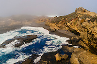 Seascape, Point Lobos State Marine Reserve, Monterey County, California USA