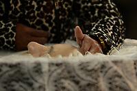 PORTO ALEGRE, RS, 20.06.2017 – FUNERAL-JORNALISTA - Movimentação durante funeral de Francisco Paulo Sant'Ana que faleceu aos 78 anos com insuficiência respiratória e infecção generalizada  na Arena do Grêmio na cidade de Porto Alegre. Francisco Paulo Sant'Ana era jornalista, colunista do jornal Zero Hora, comentarista de esportes e ícone da torcida Gremista. (Foto: Rodrigo Ziebell/Brazil Photo Press)