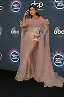 LOS ANGELES - NOV 24:  Toni Braxton at the 47th American Music Awards - Press Room at Microsoft Theater on November 24, 2019 in Los Angeles, CA