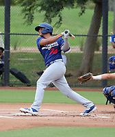 Diego Cartaya - 2019 AIL Dodgers (Bill Mitchell)