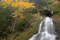 Mossy Glen Falls surrounded by autumn trees, Vermont