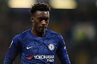 30th October 2019; Stamford Bridge, London, England; English Football League Cup, Carabao Cup, Chelsea Football Club versus Manchester United; A dejected looking Callum Hudson-Odoi of Chelsea - Strictly Editorial Use Only. No use with unauthorized audio, video, data, fixture lists, club/league logos or 'live' services. Online in-match use limited to 120 images, no video emulation. No use in betting, games or single club/league/player publications