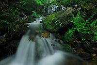 gatineau park, national park, ottawa, gatineau, quebec, Meech lake, stream, waterfall, streaming, rushing, green, water, creek