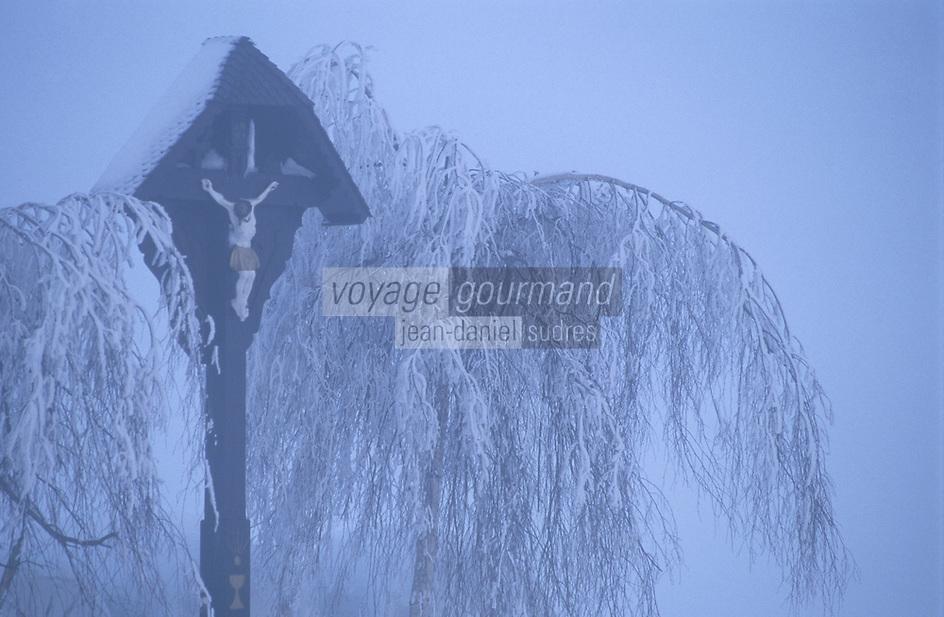 Europe/Allemagne/Forêt Noire/Env de Hinterzarten : Calvaire en hiver