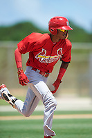 GCL Cardinals shortstop Delvin Perez (23) runs to first base during the second game of a doubleheader against the GCL Marlins on August 13, 2016 at Roger Dean Complex in Jupiter, Florida.  GCL Cardinals defeated GCL Marlins 2-0.  (Mike Janes/Four Seam Images)