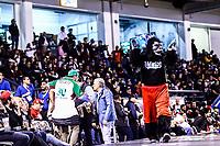 Chango, mascota<br /> <br /> Mexico pierde 5 carreras 4 , durante el  segundo d&iacute;a de actividades de la Serie del Caribe con el partido de beisbol  Tomateros de Culiacan de Mexico  contra los Alazanes de Gamma de Cuba en estadio Panamericano en Guadalajara, M&eacute;xico,  s&aacute;bado 3 feb 2018. <br /> (Foto  / Luis Gutierrez)