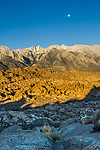 Moonset over the Sierra Nevada range, with the golden lit badlands of the Alabama Hills in foreground.
