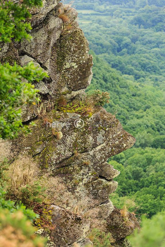 France, Orne (61), Saint-Philbert-sur-Orne, la Roche d'Oëtre, rocher dit le profil humain ou Sphinx // France, Orne, Saint Philbert sur Orne, The Rock of Oetre with its rocks resembling the profile of a human face