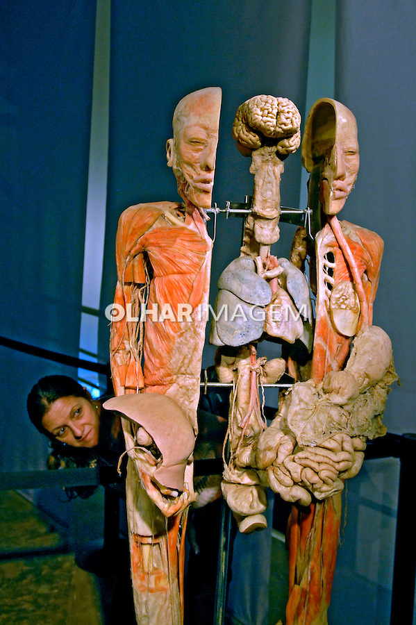 Exposição CORPO HUMANO. Sistema Digestivo. São Paulo. 2007. Foto de Juca Martins.
