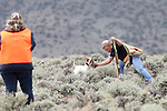 Competitor Dan Hannah competes with Red during the U.S. Bird Dogs Western State Nationals in Mound House, Nev., on Friday, April 24, 2015. <br /> Photo by Cathleen Allison