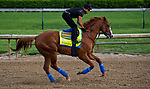 LOUISVILLE, KY - MAY 03: Justify, trained by Bob Baffert, exercises in preparation for the Kentucky Derby at Churchill Downs on May 3, 2018 in Louisville, Kentucky. (Photo by Scott Serio/Eclipse Sportswire/Getty Images)