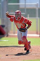 Cincinnati Reds catcher Jose Duarte (67) chases a runner back to third in a run down during an instructional league game against the Cleveland Indians on September 28, 2013 at Goodyear Training Complex in Goodyear, Arizona.  (Mike Janes/Four Seam Images)