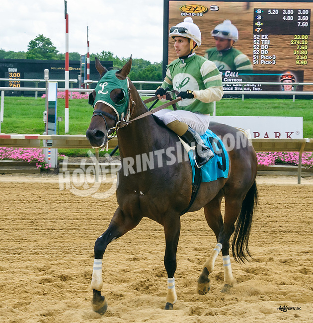 Bird Call winning at Delaware Park on 8/10/16