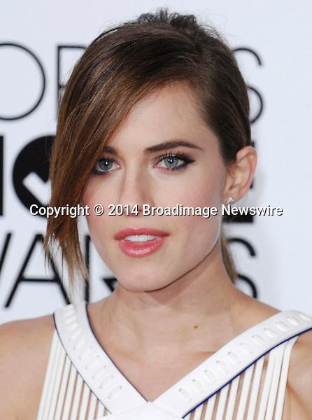 Pictured: Allison Williams<br /> Mandatory Credit &copy; Adhemar Sburlati/Broadimage<br /> People's Choice Awards 2014 - Arrivals<br /> <br /> 1/8/14, Los Angeles, California, United States of America<br /> <br /> Broadimage Newswire<br /> Los Angeles 1+  (310) 301-1027<br /> New York      1+  (646) 827-9134<br /> sales@broadimage.com<br /> http://www.broadimage.com