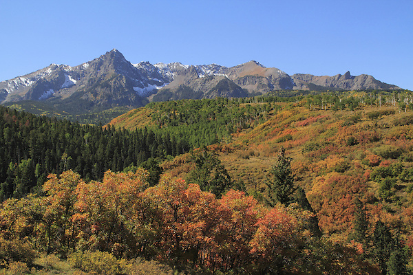 Sneffels Range with scrub oak and Aspen trees, autumn, Colorado. John offers autumn photo tours throughout Colorado.