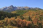 Sneffels Range with scrub oak and Aspen trees, autumn, Colorado. John offers autumn photo tours throughout Colorado.
