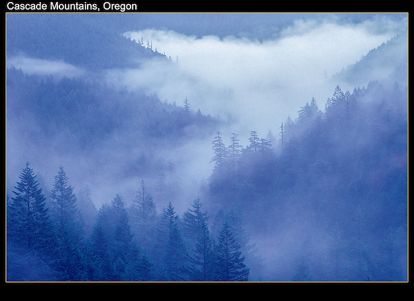 You don't appreciate how ephemeral fog is, until you compare your images.<br />