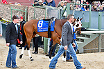 HOT SPRINGS, AR - APRIL 14: Oaklawn Handicap. Oaklawn Park on April 14, 2018 in Hot Springs,Arkansas. #8 Inside Straight (Photo by Ted McClenning/Eclipse Sportswire/Getty Images)