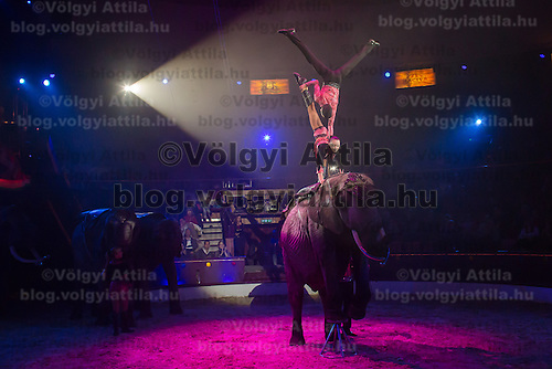 Children of the Caselly family perform on an elephant trained by their father Rene Caselly during the premiere of the new show titled Lights of the Universe in Budapest, Hungary on October 05, 2013. ATTILA VOLGYI