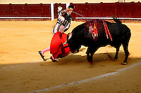 A Spanish bullfighter (matador) kills a bull with the sword at the bullring in Torremolinos, Spain, 28 July 2006.