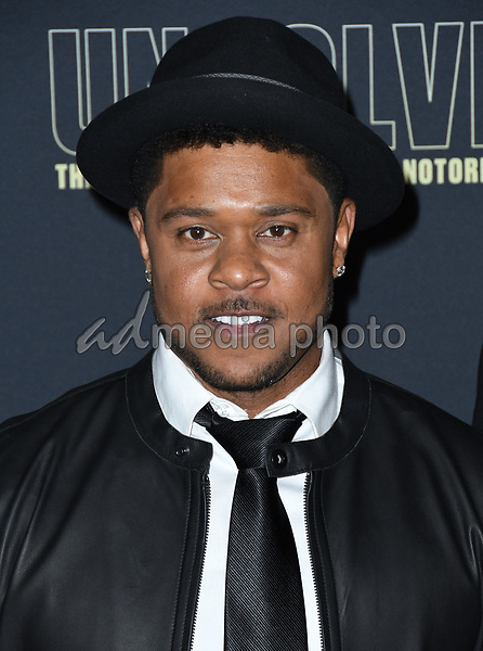 """22 February 2018 - Hollywood, California - Pooch Hall. USA Network's """"Unsolved: The Murders of Tupac & The Notorious B.I.G."""" held at Avalon Hollywood. Photo Credit: Birdie Thompson/AdMedia"""