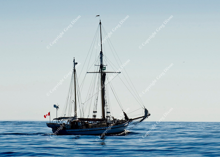 A sailboat crosses Oak Bay off the coast of Victoria and Vancouver Island, British Columbia, Canada on Sept. 9, 2011