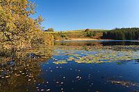Plateau de Millevaches<br /> Aussi commune de Millevaches