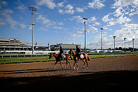 LOUISVILLE, KENTUCKY - MAY 01: at Churchill Downs on May 1, 2017 in Louisville, Kentucky. (Photo by Douglas DeFelice/Eclipse Sportswire/Getty Images)