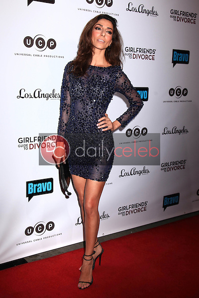 "Necar Zadegan<br /> at the ""Girlfriends Guide to Divorce"" Premiere Screening, Ace Hotel, Los Angeles, CA 11-18-14<br /> David Edwards/DailyCeleb.com 818-915-4440"