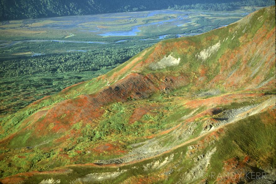 Tundra in the Alaska Range