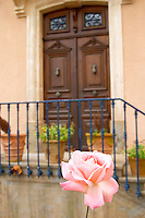 Chateau Mansenoble. In Moux. Les Corbieres. Languedoc. A door. Rose flower. France. Europe.