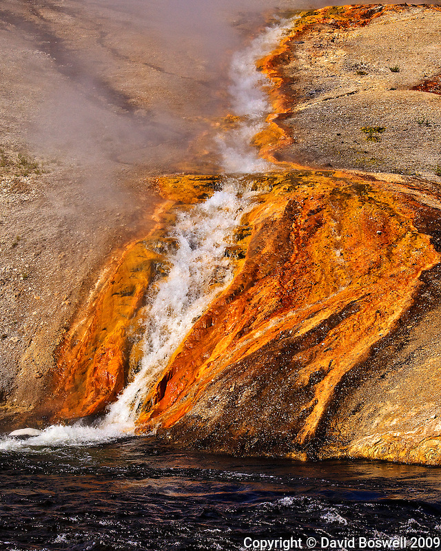 Bacteria lines the runoff from Midway Geyser Basin as it empties into the Firehole River in Yellowstone National Park.
