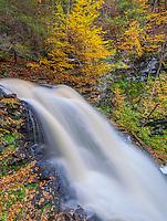 Ricketts Glen State Park, PA: Erie Falls in autumn on Kitchen Creek